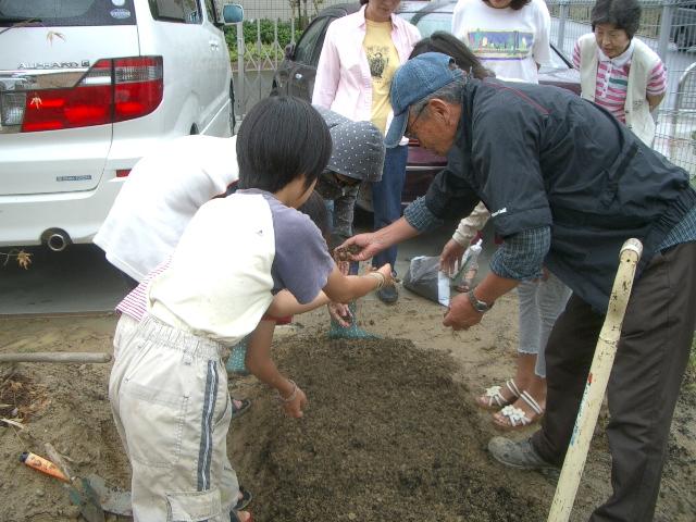 菜の花プロジェクトの活動に参加しています