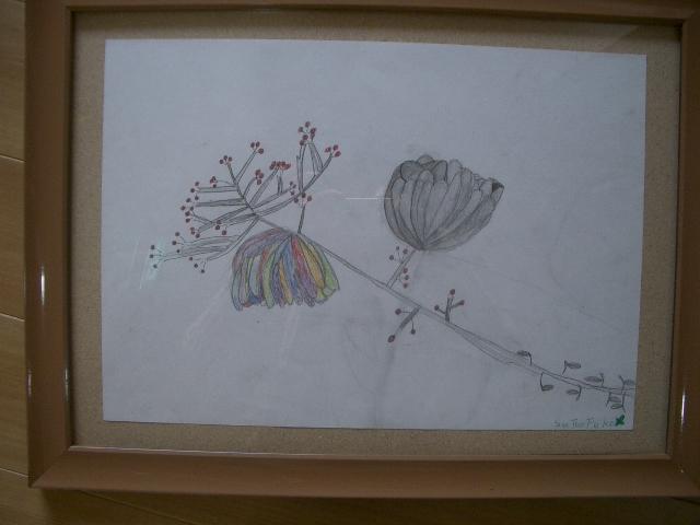 鉛筆画を描きました